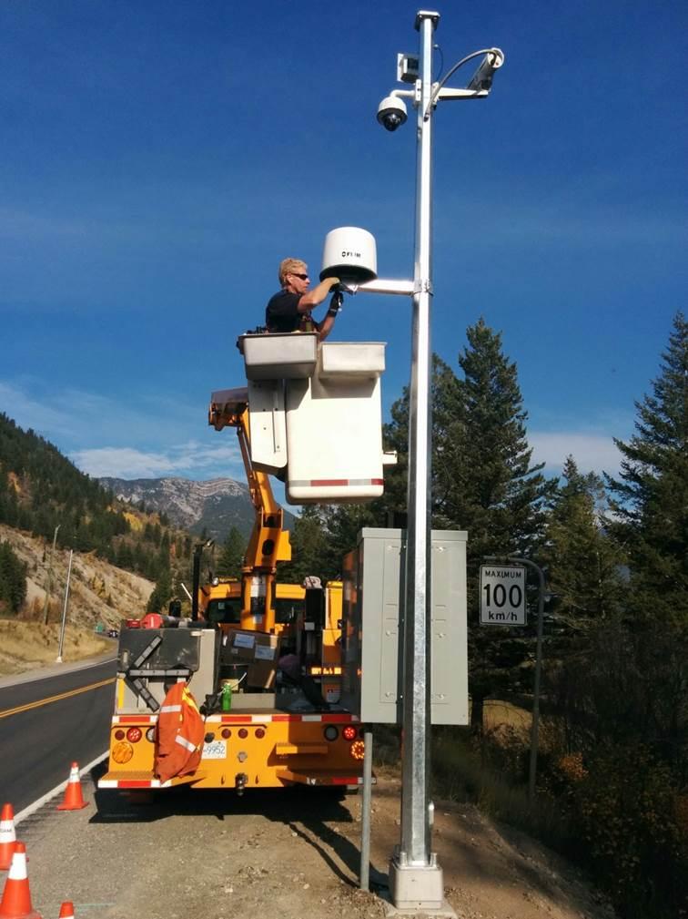 Wildlife Detection System Installation
